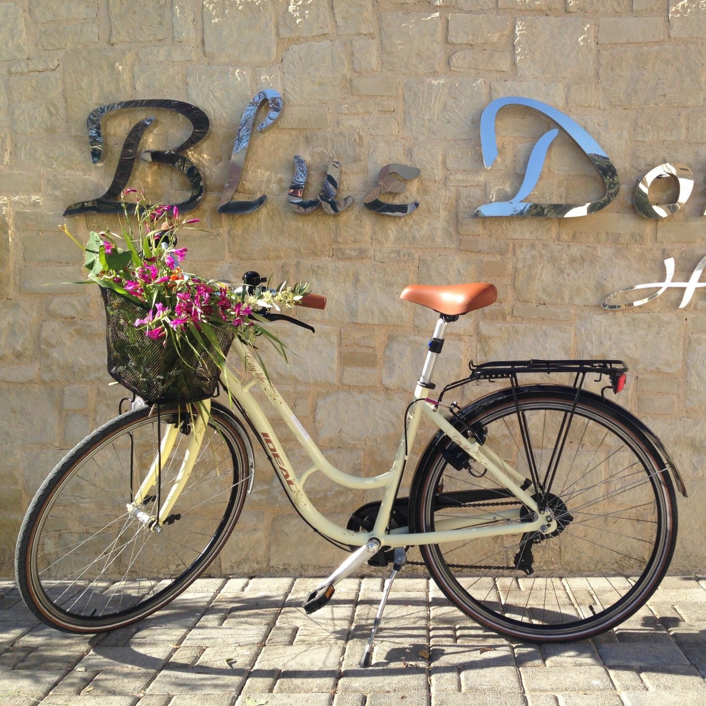 A bicycle with its basket filled with flowers in front of a stone wall in Blue Dome Hotel in Platanias.